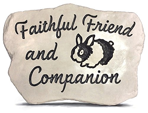 RocksOnly Faithful Friend and Companion - Engraved and Cast in a heavy little 3 LB stone (Rabbit)