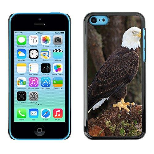 Premio Sottile Slim Cassa Custodia Case Cover Shell // F00008831 Aigle chauve // Apple iPhone 5C