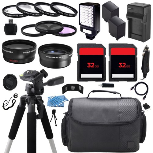 Advanced Camcorder Video Camera Accessory Holiday Package Kit includes (2) High Capacity BP819 BP-819 Replacement Battery with Car/International Charger + Deluxe Carrying Travel Case + Digital LED Video Photo Light + (2) 32GB Memory Card + 58mm 0.43x High by ECD
