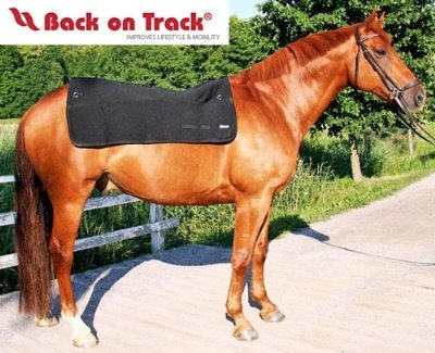 Back on Track Therapeutic Horse Back Pad (Saddle Back Pad)