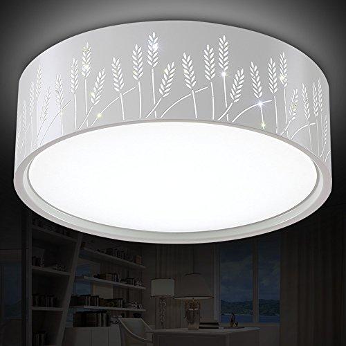 BLYC- Dimmbare LED-Deckenleuchte Runde Hauptschlafzimmer leichte romantische moderne minimalistische Restaurants Zimmer Balkon Lichter schmücken die Studie Idee 530 * 170mm , white
