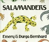Salamanders, Emery Bernhard, 0823411486