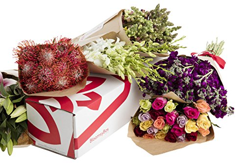 Flowers of the Month Subscription -12 Months by BloomsyBox