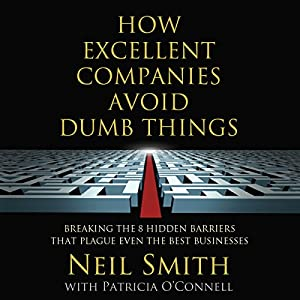 How Excellent Companies Avoid Dumb Things Audiobook