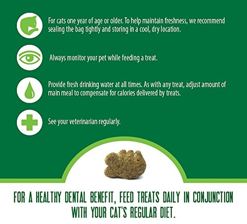 FELINE GREENIES Dental Treats For Cats Savory Salmon Flavor 5.5 oz. With Natural Ingredients Plus Vitamins, Minerals, And Other Nutrients