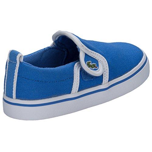 Lacoste Enfantss Bleu Gazon Slip On Basket