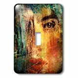 3dRose Cassie Peters Mixed Media - Woman in the City - Light Switch Covers - single toggle switch (lsp_262924_1)