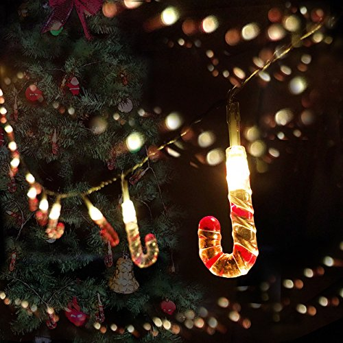 Led Lights On Christmas Trees Reviews