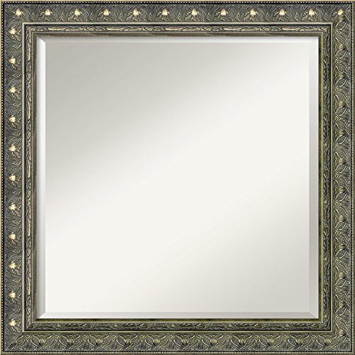 Framed Mirrors for Wall Barcelona Champagne Mirror for Wall Solid Wood Wall Mirrors Medium Wall Mirror 24.38 x 24.38