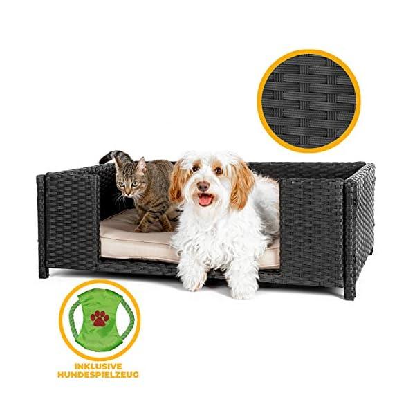 518GW0eihHL Cherioll weico Hundebett in Rattan-Optik 90 x 60 x 30 cm - gemütliches Hundebett mit waschbarem Kissen - stabiles…