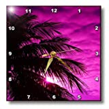 Cheap 3dRose dpp_174386_2 Image of Fuchsia Sky Over Silhouette Palm Tree Wall Clock, 13 by 13-Inch