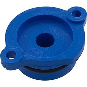Pentair LG30B Lower Bearing with O-Ring