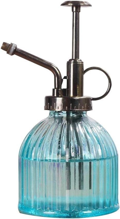 Yardwe Planta de Botella de Spray de Agua Retro de Vidrio Flor ...