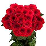50 Fresh Cut Red Roses | Freedom Red Roses | Fresh Flowers Express Delivery | Perfect for Birthdays, Anniversary or any occasion.