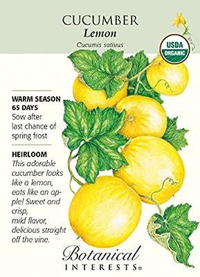 Lemon Cucumber Certified Organic Heirloom Seeds