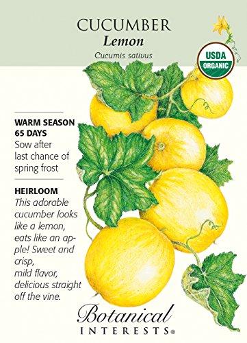 Botanical Interests, Seed Cucumber Lemon Organic (Apple Cucumber Seeds)