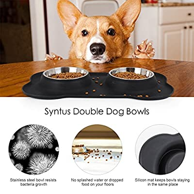 Syntus Double Dog Bowls Stainless Steel Dog Pet Feeder with Non-skid Anti-overflow Silicon Mat for Puppy, Dogs, Cats and Other Pets