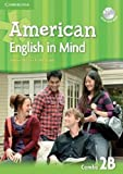 American English in Mind Level 2 Combo B with DVD-ROM, Herbert Puchta and Jeff Stranks, 0521733464