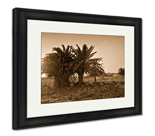 (Ashley Framed Prints Landscape with Old Palm in Desert, Wall Art Home Decoration, Sepia, 34x40 (Frame Size), Black Frame, AG6498082)