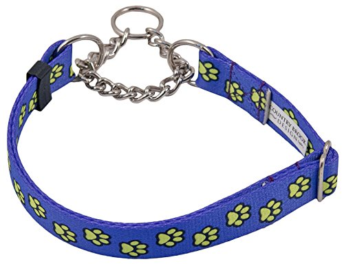 Country Brook Design Blue Busy Paws Half Check Dog Collar - Extra Large