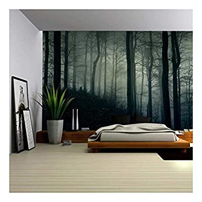 A Dark and Misty Forest Wall Mural - Wall Murals