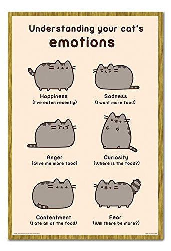 Pusheen Understanding Your Cat Emotions Poster Magnetic Notice Board Oak Framed - 96.5 x 66 cms (Approx 38 x 26 inches) hot sale