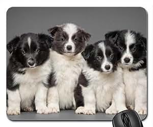 BORDER COLLI Cute Cool Decorative Design Animal Dog Mousepad
