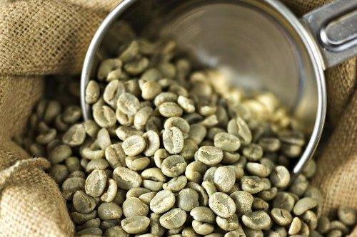 Peru Approcassi Cajamarca Fair Trade Shade Grown Organic Coffee Beans (Medium Roast (Full City +), 15 Pounds Whole Beans) by RhoadsRoast Coffees (Image #6)