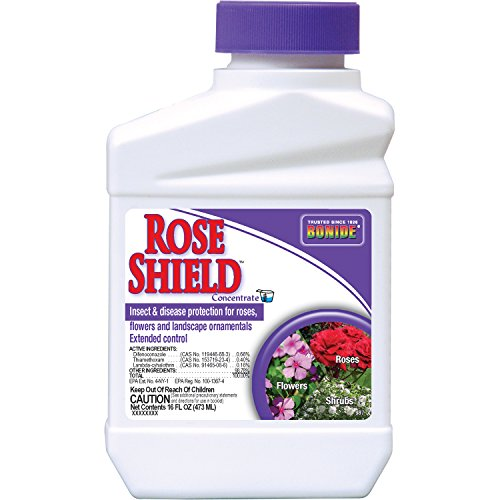 (Bonide (BND987) - Rose Shield Insect Control Concentrate, Insecticide (16)