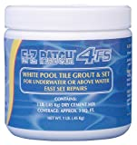 E-z Patch 4 F.s. White Pool Tile Grout Repair (Fast Set) 1 Lb.