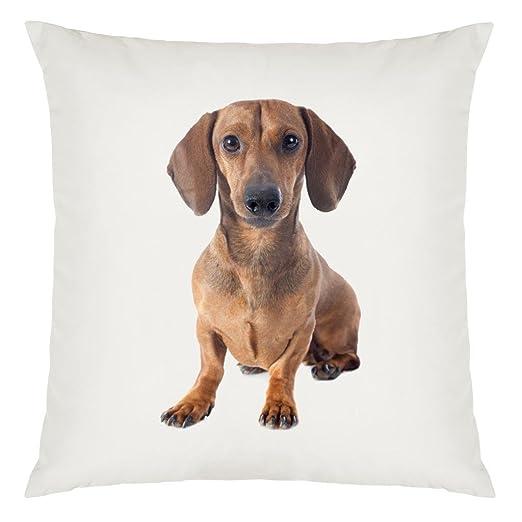 Diseño de perro salchicha perro imagen grande funda de cojín ...