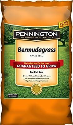 Pennington 100086585 Bermudagrass Grass Seed, 1 LB, Green