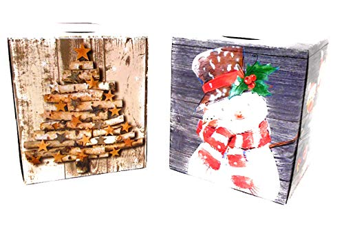 (Christmas Holiday Facial Tissues Decorator Packages 2 Pack Bundle Set Rustic Farmhouse Birch Logs (Snowman and Birch Tree) )