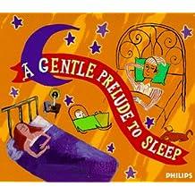 Gentle Prelude to Sleep