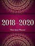 #1: 2018 - 2020 Three Year Planner: Monthly Schedule Organizer - Agenda Planner For The Next 3Years, 36 Months Calendar, Appointment Notebook, Monthly Planner (3 year planner 2018-2020) (Volume 5)