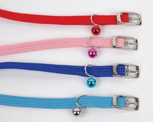 Kool Collar For Dogs Reviews
