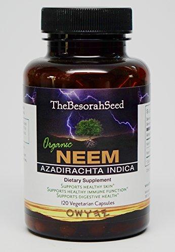 Neem Leaf Capsules Organic - 120ct - All Natural Pure Triple Strength Vegetarian 1,160mg Vegan Made in USA - Body Detox and Energy Booster - Kosher