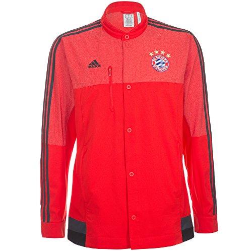 (Adidas Bayern Munich Anthem Jacket (Small))