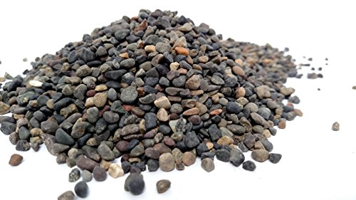 Small World Slate & Stone Exotic Mini Mexican Beach Pebbles Pea Gravel 1/8 inch (5lbs) ()