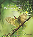 Visual Celebration of Borneo's Wildlife