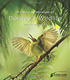 Visual Celebration of Borneo's Wildlife