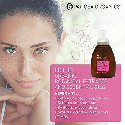 Pangea Organics Hand Soap | Italian White Sage, Geranium, & Yarrow | Best Natural Foaming Hand Soap | Rich w/ Botanical Extracts & Essential Oils | 8.4 Fl. Oz. Hand Soap | Vegan & Gluten-Free