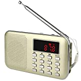 TIVDIO L-218 Portable AM/FM Transistor Radio with Mp3 Music Player Speaker Support Micro IF Card (Gold)