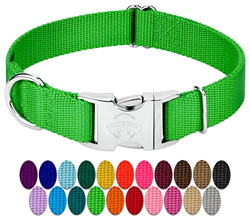Country Brook Design - Vibrant 25 Color Selection - Premium Nylon Dog Collar with Metal Buckle (Small, 3/4 Inch, Hot Lime Green)
