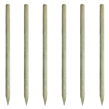 vidaXL Lot de 6 piquets de clôture en bois 200 cm Bordures de jardin ...