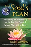 Your Soul's Plan: Discovering the Real Meaning of the Life You Planned Before You Were Born - 518HuSbwGcL - Your Soul's Plan: Discovering the Real Meaning of the Life You Planned Before You Were Born