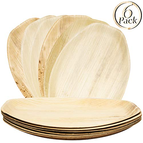 6 Palm Leaf Disposable Platters, Biodegradable Eco Friendly Bamboo Wood Like Oval Serving Trays 15 x 10 Inches Paper and Plastic (Bamboo Oval Platter)