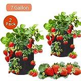 LittleClover Strawberry Grow Bags, 7Gallon
