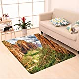 Nalahome Custom carpet National Parks Utah Plateau Mojave Desert Southwest Erosion Navajo Artprint Brown Green area rugs for Living Dining Room Bedroom Hallway Office Carpet (32.4''x118'')