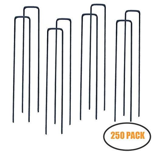 MTB 250 Pack 10